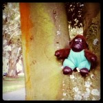 "monkeying around at the amazing ""handle it"" bbq"