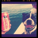 Bullet likes the Tecate