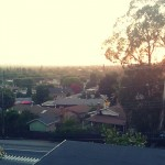 overlooking the sunset at Mark's fresh new spot