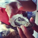Getting better with the shucking at Tomales Bay Oyster Co